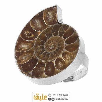 خرید انگشتر فسیل آمونیت