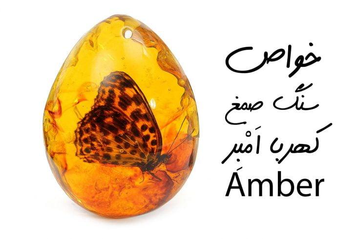 خواص سنگ صمغ کهربا اَمْبِر Amber